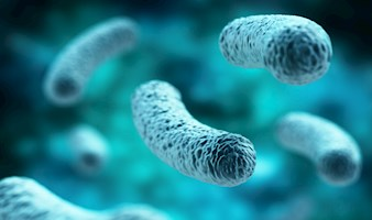 Upskill now with the BRAND NEW Legionella Management Course!